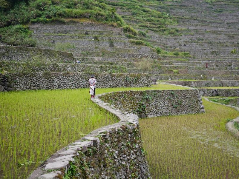 04-婦人行走於Batad梯田的田埂上