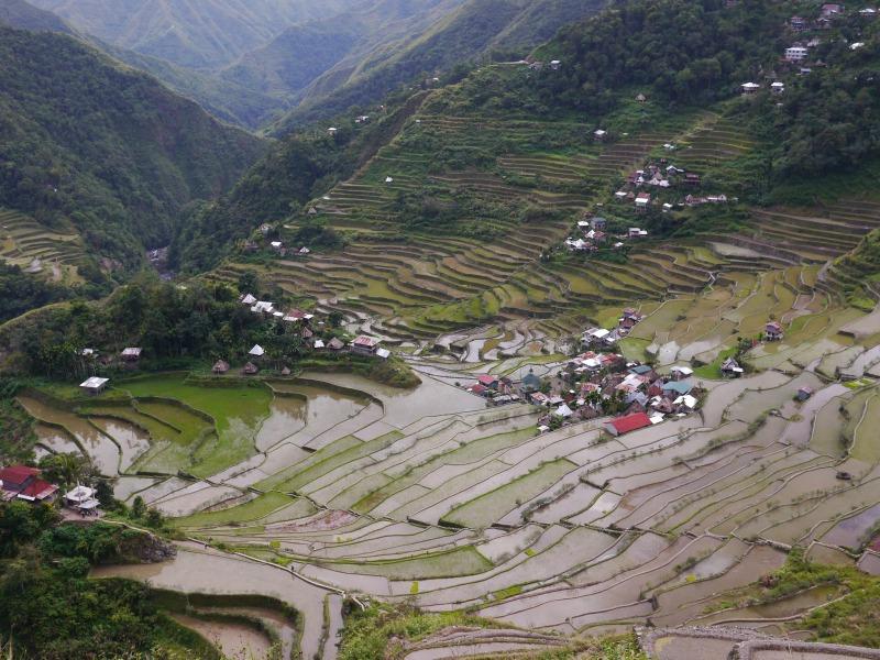 05-Batad的水田耕作已有2000多年歷史,由伊富高人世代傳承著