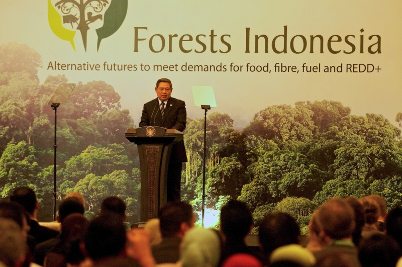 Forests Indonesia Conference (CIFOR)