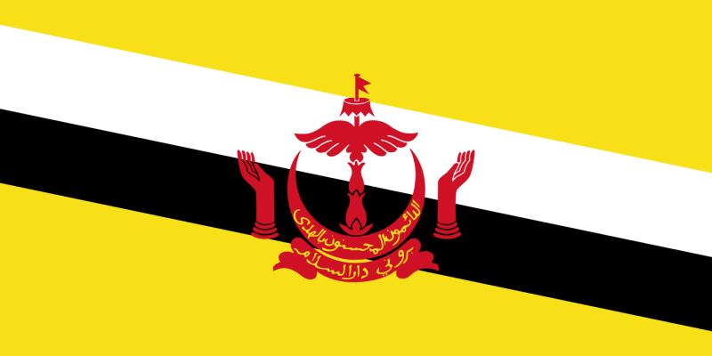 Flag_of_Brunei.svg